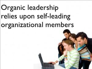 Organic Leadership and Mentoring