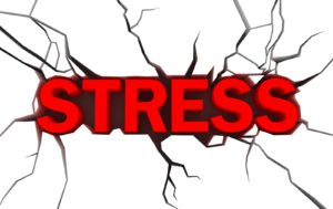 THERE IS NO SUCH THING AS STRESS